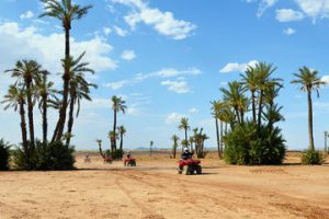 camel-and-quad-biking-tour-from-marrakech-in-marrakech-235415